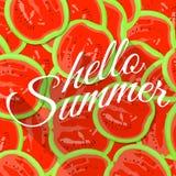 夏天背景用红色西瓜 图库摄影