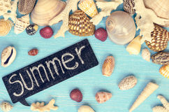 夏天背景由贝壳和海对象做成 免版税库存图片