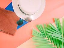 夏天背景的平的位置与在p的棕榈叶和海滩帽子 免版税图库摄影