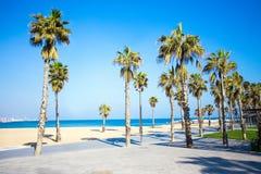 夏天背景-散步、海滩和棕榈在巴塞罗那 免版税库存图片