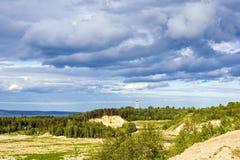 夏天自然风景 免版税库存图片