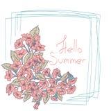 夏天花卉卡片 也corel凹道例证向量 免版税库存图片