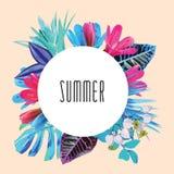 夏天花卉圆的印刷品 库存例证