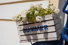 夏天花箱子和自行车 免版税库存图片