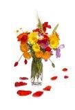 夏天花花束和鸦片叶子瓣,白色背景 免版税库存照片