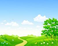 夏天草甸和天空背景 免版税库存照片