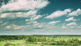 夏天草甸和树丛森林环境美化在与蓬松云彩的风景天空下在欧洲 时间间隔, Timelapse,时间 股票视频