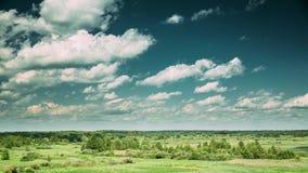 夏天草甸和树丛森林环境美化在与蓬松云彩的风景天空下在欧洲 时间间隔, Timelapse,时间 影视素材