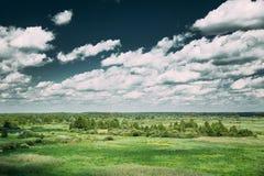 夏天草甸和树丛风景在风景剧烈的天空下 图库摄影