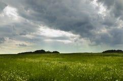 夏天草甸在PelhÅ™imov,捷克 库存图片