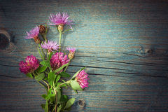 夏天草甸开花花束 在农村样式的花卉构成 免版税库存图片