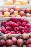 夏天莓果和果子 免版税库存照片