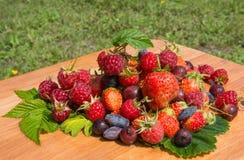 夏天莓果汇集 库存图片