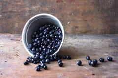 夏天莓果蓝莓水滴 免版税库存照片