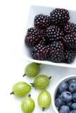 夏天莓果-黑莓、鹅莓和蓝莓在阳光下 免版税图库摄影
