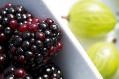 夏天莓果-黑莓和鹅莓在阳光下 免版税库存照片