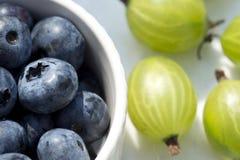夏天莓果-蓝莓和鹅莓在阳光下 库存图片