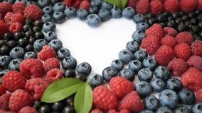夏天蓝莓、莓和无核小葡萄干心脏在白色背景隔绝的框架戒毒所 爱莓果边界设计 影视素材