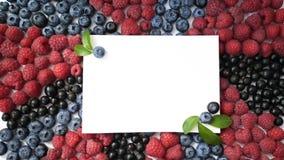 夏天蓝莓、莓和无核小葡萄干心脏在白色背景隔绝的框架戒毒所 爱莓果边界设计 股票录像