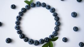 夏天蓝莓心脏在白色背景的框架戒毒所录影  爱莓果边界设计 顶视图或舱内甲板的关闭 股票视频