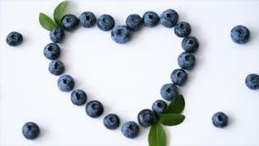 夏天蓝莓心脏在白色背景隔绝的框架戒毒所 爱莓果边界设计 顶视图或舱内甲板的关闭 股票录像