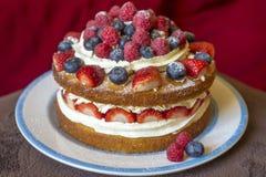 夏天蛋糕 免版税库存图片