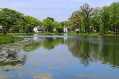 夏天视图在城市公园 免版税库存照片