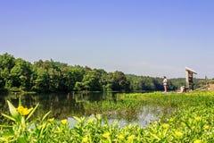 夏天远足在橡木山国家公园 免版税库存照片