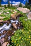 夏天野花之前围拢的巨石城小河 库存图片