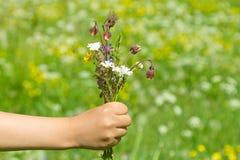 夏天野花花束在child& x27的; s手 免版税库存图片
