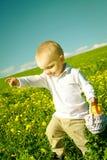 夏天野餐的小男孩孩子与果子篮子  免版税图库摄影