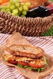 夏天野餐篮子平板炉鸡丁沙拉三明治 库存照片