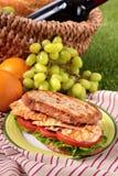 夏天野餐篮子平板炉鸡丁沙拉三明治 图库摄影