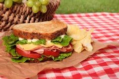 夏天野餐篮子敬酒了火腿和乳酪三明治 库存照片