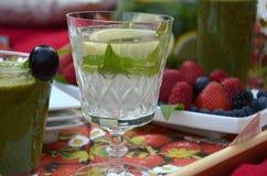 夏天野餐-一杯在一块水晶词根玻璃的有薄荷味的柠檬水在野餐盘子 库存照片