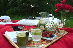 夏天野餐-食物,饮料,杯盘子在一块水晶词根玻璃的有薄荷味的柠檬水在一个野餐盘子,在一条红色毯子 免版税图库摄影