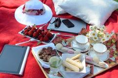 夏天野餐-食物,饮料,杯盘子在一块水晶词根玻璃的有薄荷味的柠檬水在一个野餐盘子,在一条红色毯子 免版税库存图片