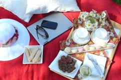 夏天野餐-食物,饮料,杯盘子在一块水晶词根玻璃的有薄荷味的柠檬水在一个野餐盘子,在一条红色毯子 库存照片