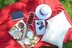 夏天野餐-食物,饮料,杯盘子在一块水晶词根玻璃的有薄荷味的柠檬水在一个野餐盘子,在一条红色毯子 库存图片