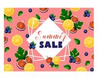夏天销售横幅用果子和莓果柠檬、无花果、蓝莓、叶子、框架和文本在桃红色 库存例证