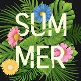 夏天销售,夏令时字法 热带棕榈叶和花背景 向量例证