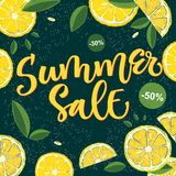 夏天销售-与花卉元素的书法明亮的五颜六色的设计 皇族释放例证