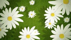 夏天雏菊圈 向量例证