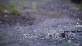 夏天雨水滴在水坑下跌并且从浪花提起喷泉 影视素材