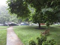 夏天雨 库存图片