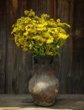夏天领域黄色在木老背景的一个老水罐开花 图库摄影