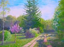 夏天风景五颜六色的树 免版税图库摄影