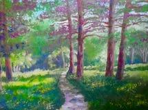 夏天风景五颜六色的树 图库摄影