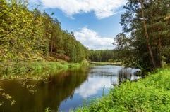 夏天风景在乌拉尔,鄂毕河,俄罗斯 免版税库存照片