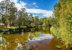 夏天风景在乌拉尔,鄂毕河,俄罗斯 免版税库存图片